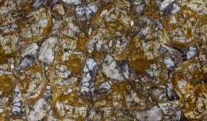 petrified wood yellow with white